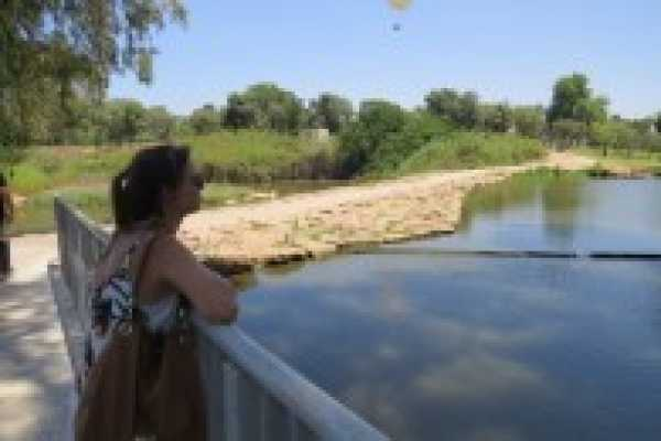 Rosh Tzipor Bird-Watching Center: A Gem of Nature in the Heart of the City