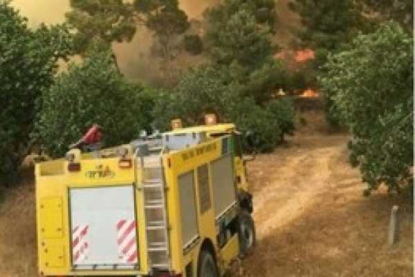 Huge Wildfire in the Forests of Eshtaol and Tzora